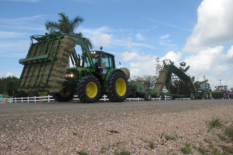 S'investir dans le secteur agricole: un choix judicieux