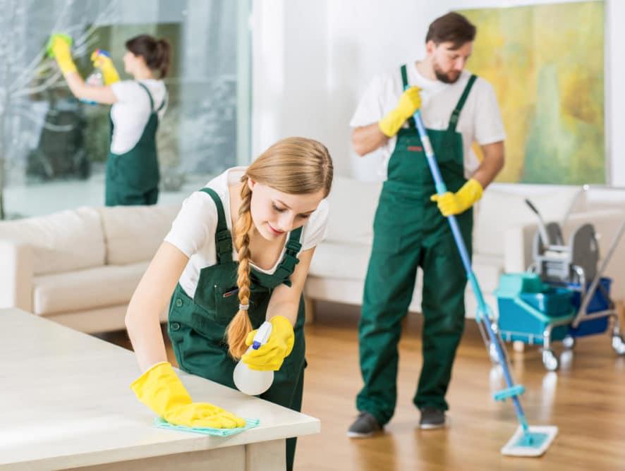 Société de nettoyage  : choisir le bon rythme d'intervention